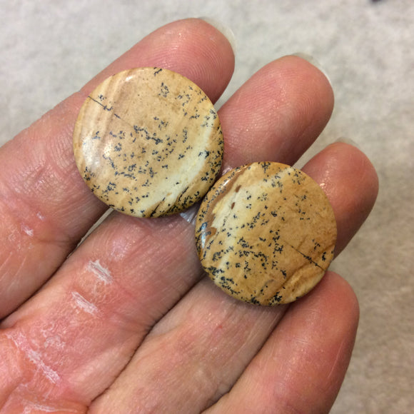 Matching Pair of Picture Jasper Round Shaped Flat Back Cabochons - Measuring 24mm x 24mm, 4mm Dome Height - Natural High Quality Gemstone