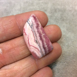Natural Pink/White Rhodochrosite Freeform Shaped Flat Back Cabochon - Measuring 17mm x 31mm, 5mm Dome Height - High Quality Gemstone