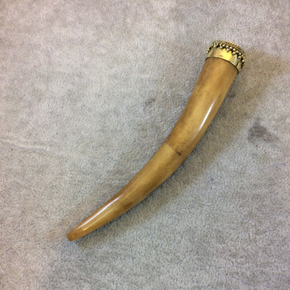 "SALE - 5.5"" Extra Long Light Brown Round Tusk/Claw Shaped Natural Ox Bone Pendant with Dotted Gold Cap - Measuring 20mm x 140mm"