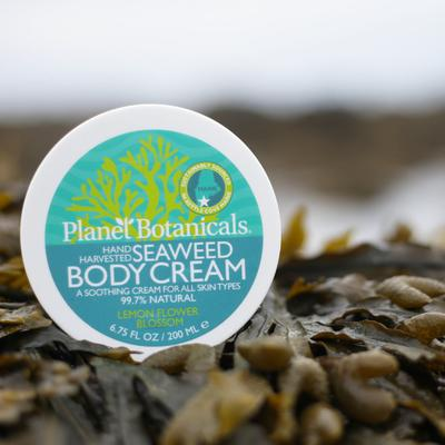 Seaweed Dream Cream, 6.75oz - piper-and-dune - Health + Beauty