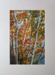 Fall Birch Print - piper-and-dune - Home Goods
