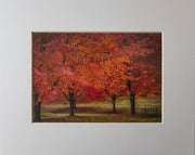 Fall Picnic Print - piper-and-dune - Home Goods