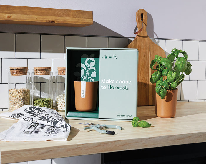 Live Well Gift Set - Harvest - piper-and-dune - Home Goods