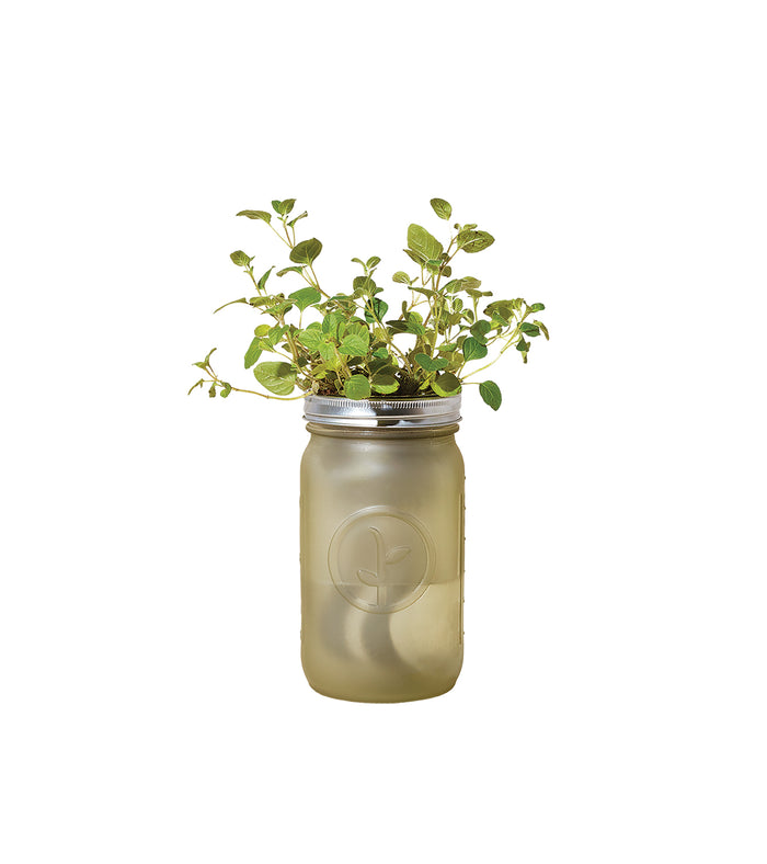 Garden Jar Pints - piper-and-dune - Home Goods
