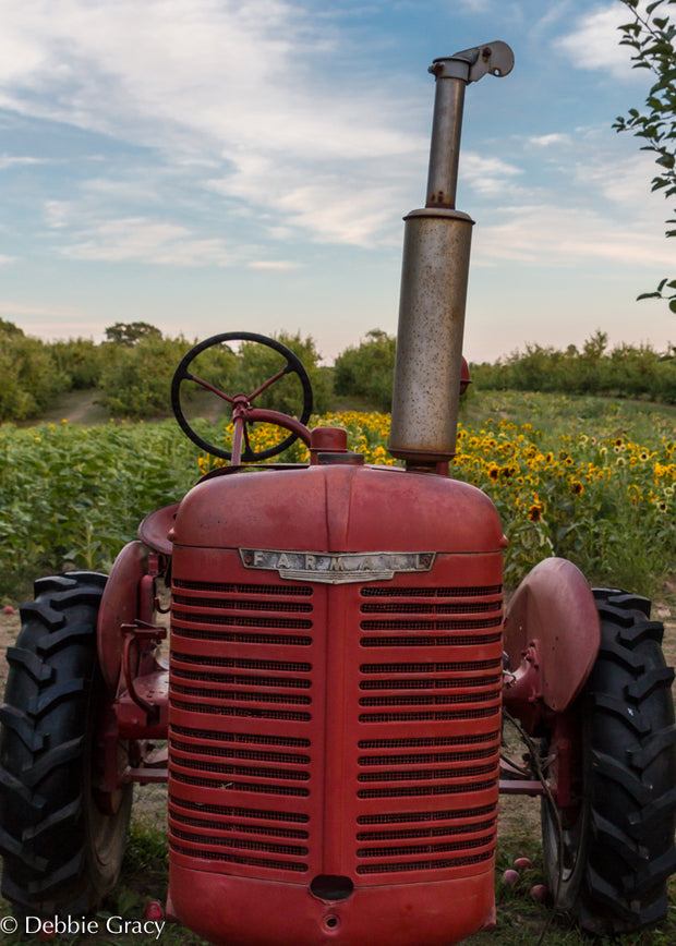 Red Tractor Print - piper-and-dune - Home Goods
