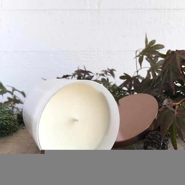 Farm Kitchen Candle Co. Scented Soy Candles - Triple Wick - 2 Scents
