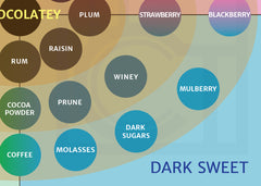Flavour Map ICCT Chocolate tasting notes: Dak Sweet