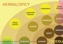 ICCT Flavour Map