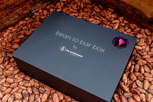 bean to bar box amor latino