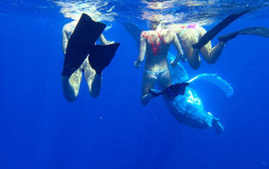 Swimming with WHALES... Yep...