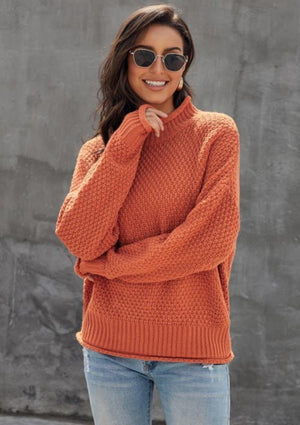 Pumpkin Pie Chunky turtleneck
