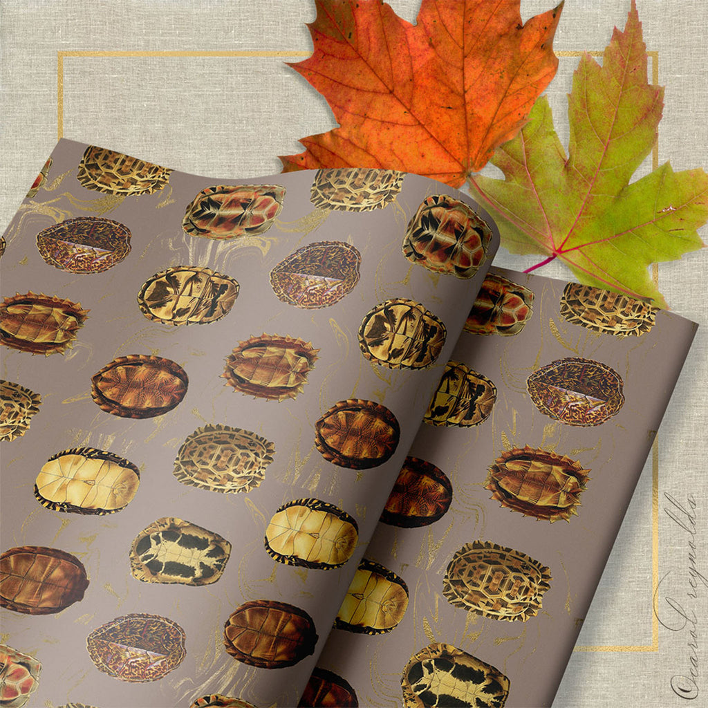 """La Tortue"": Wrapping Paper in Taupe"