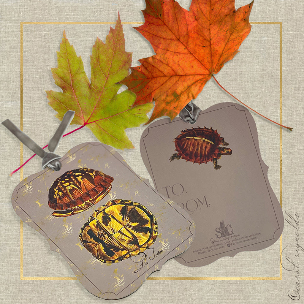 "La Tortue"" Gift Tags in Taupe"
