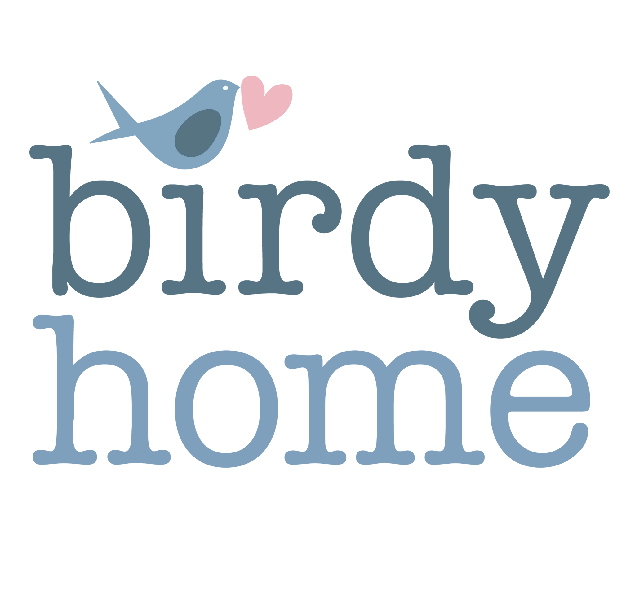 Birdyhome Additional Payments + Express delivery