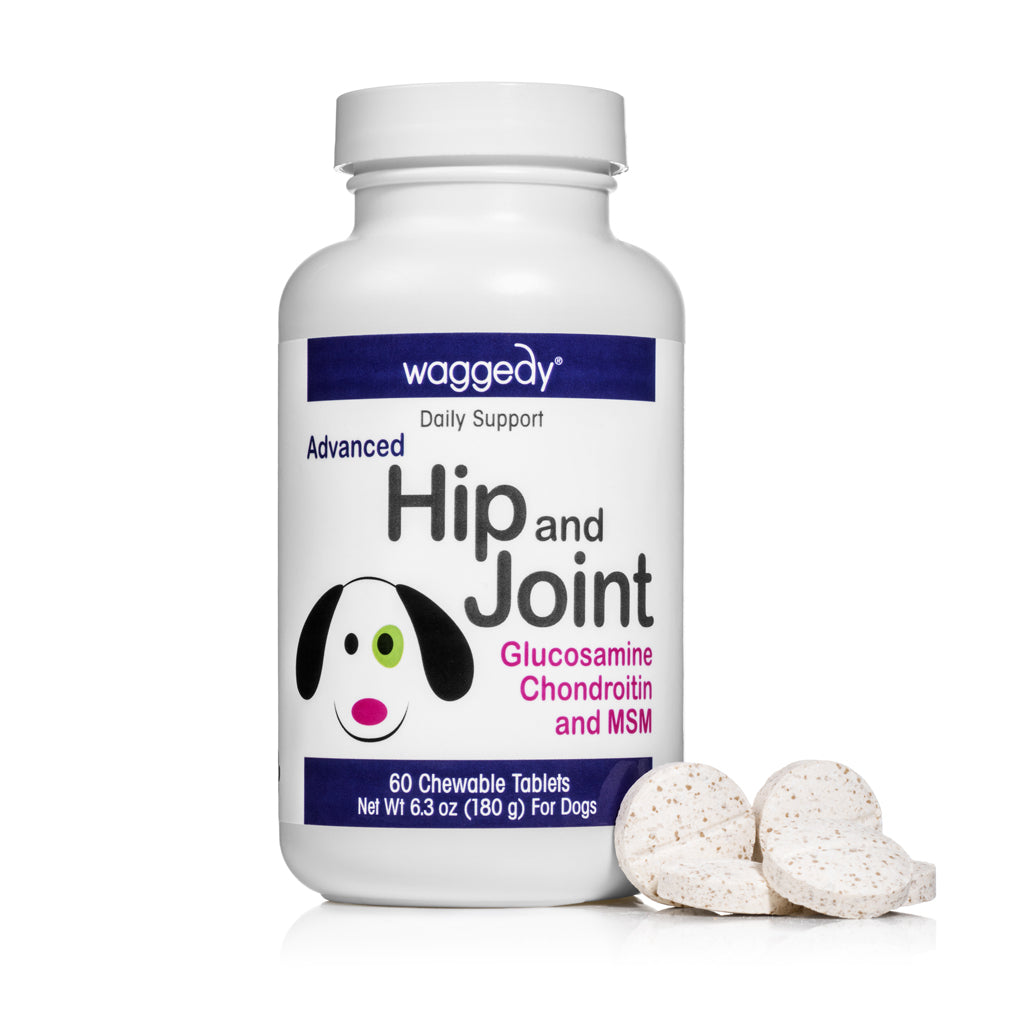 Hip and Joint
