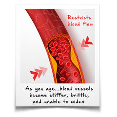 Aging causes blood vessels to become stiffer, brittle, and unable to widen...which restricts blood flow.
