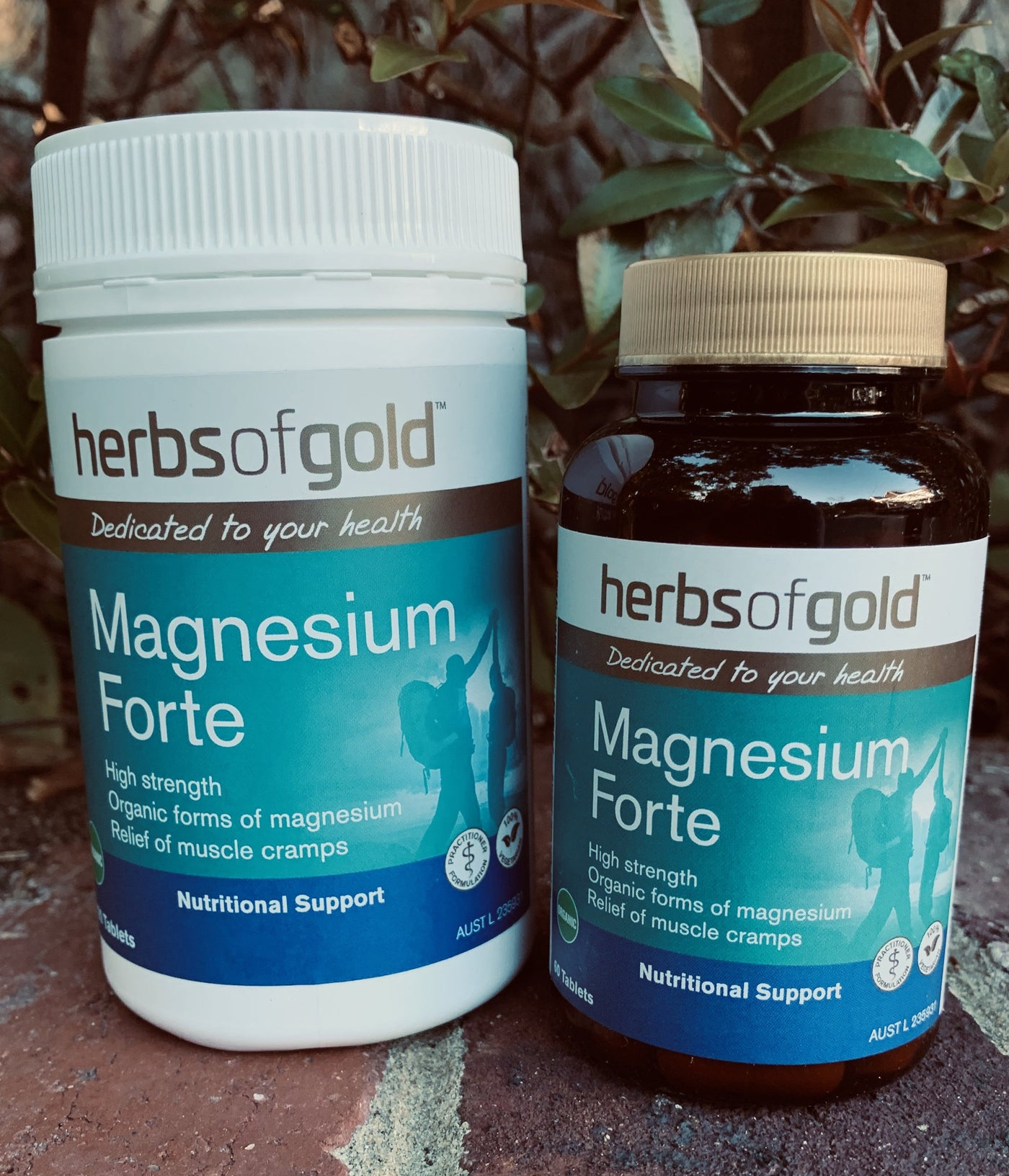 Herbs of Gold™ Magnesium Forte Tablets
