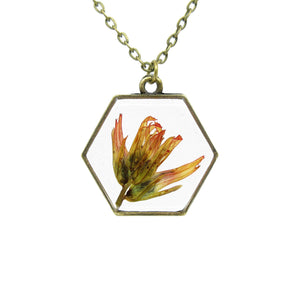 Indian Paintbrush Necklace - Hexagon Real flower leaf botanical jewelry Necklace Luna's Secret Garden