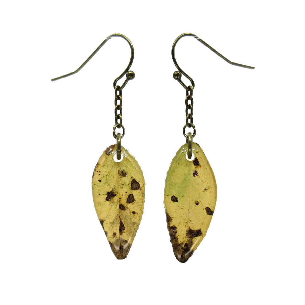 Telluride Leaf Earrings - Luna's Secret Garden