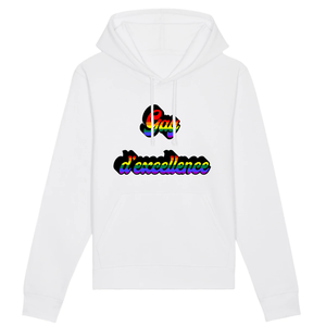 "Pull ""Gay D'excellence"" 