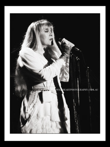 Live in Concert - Stevie Nicks 2