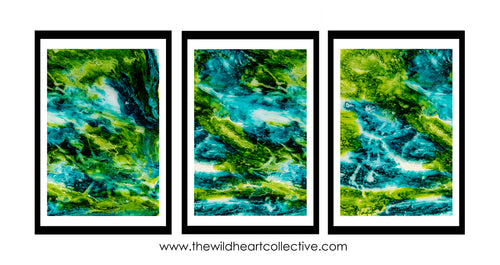 Heart of the Daintree Triptych (3 Artworks)