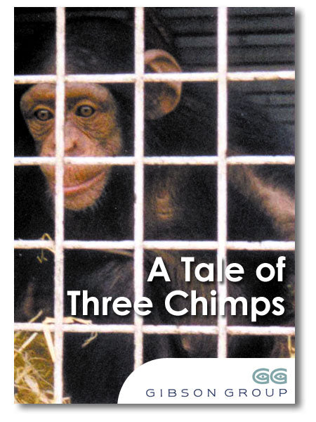 A Tale of Three Chimps