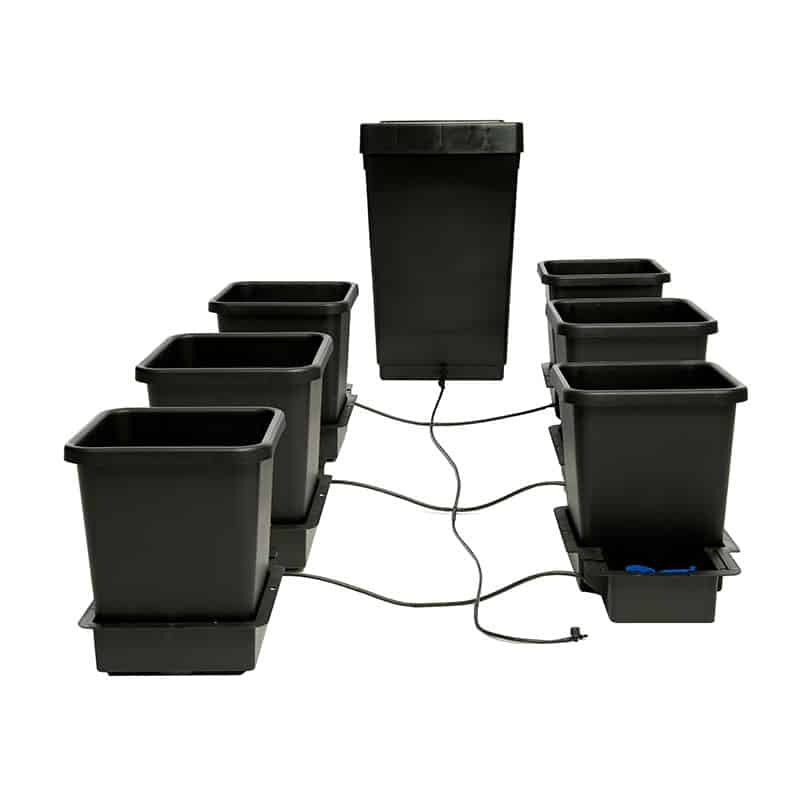 Trendygrower.com - Autopot USA 6 pot plant watering system