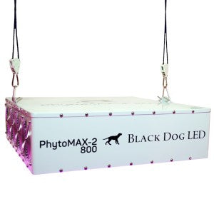 Black Dog Led - 5x5x7 Complete Grow Tent Kit