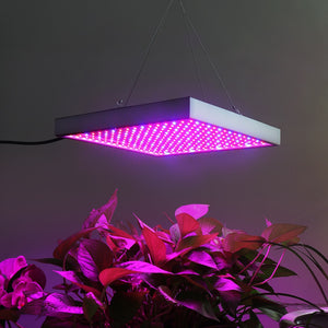 Full Spectrum indoor LED Grow Light (20W - 200W)