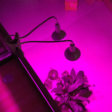 Load image into Gallery viewer, Dual 200w LED  Grow Light with Desktop Clip Holder