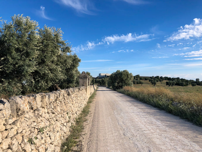 Maragold Travels: Puglia Photo Collection