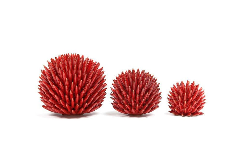 Ceramic Sea Urchin
