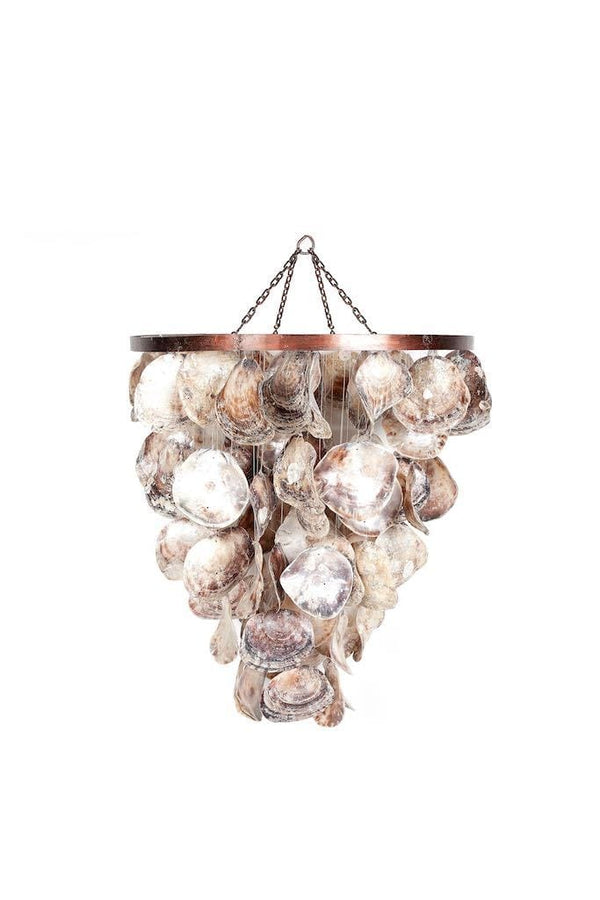 Chandelier with shells