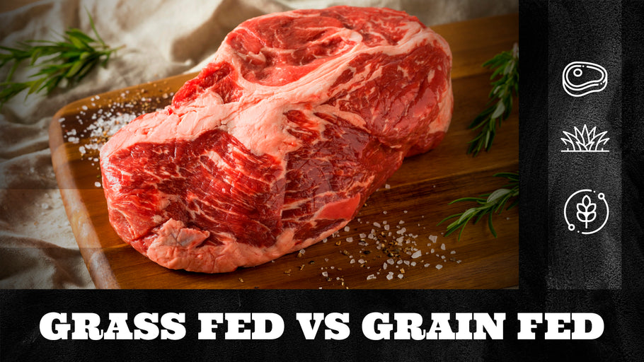 Grass Fed vs Grain Fed