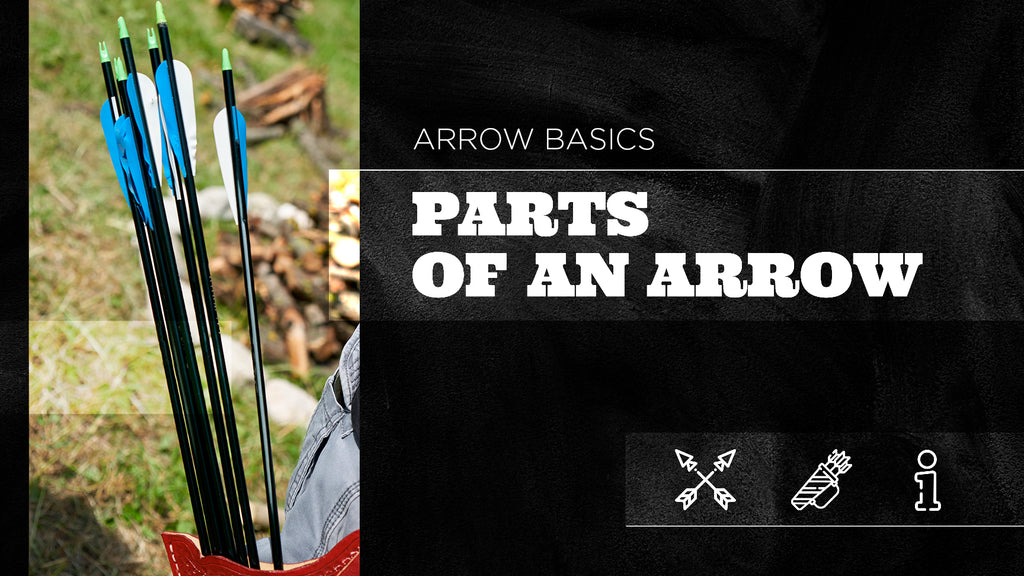Arrow Basics: Parts of An Arrow