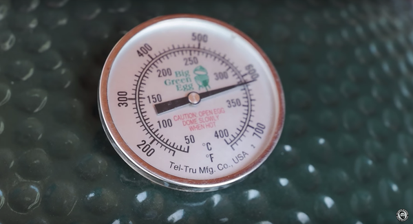 big green egg temperature guage