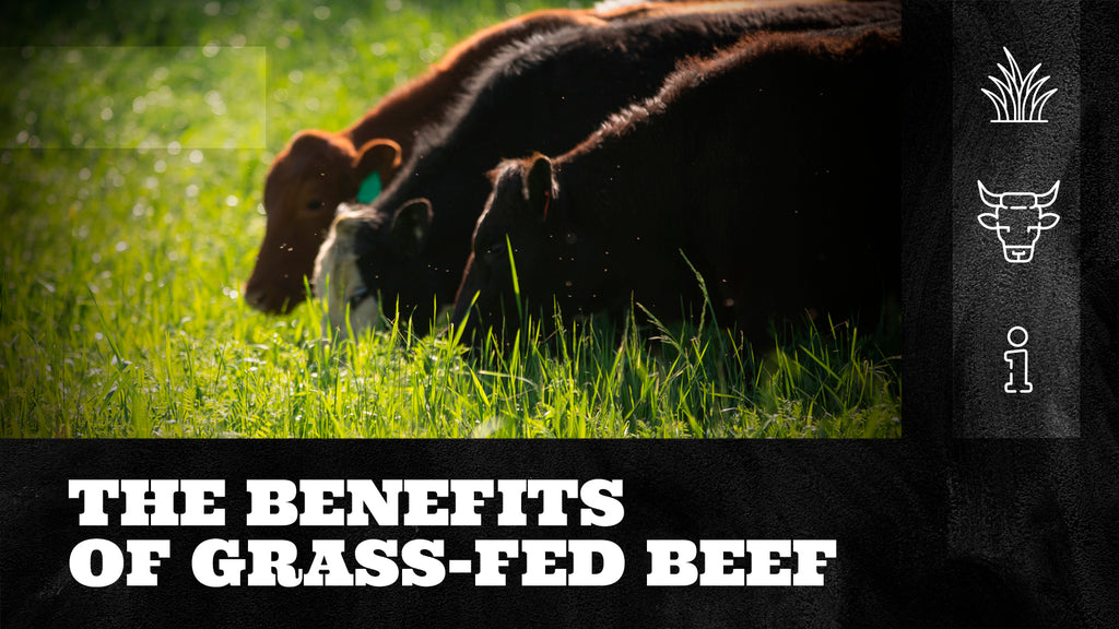 The Benefits of Grass-Fed Beef