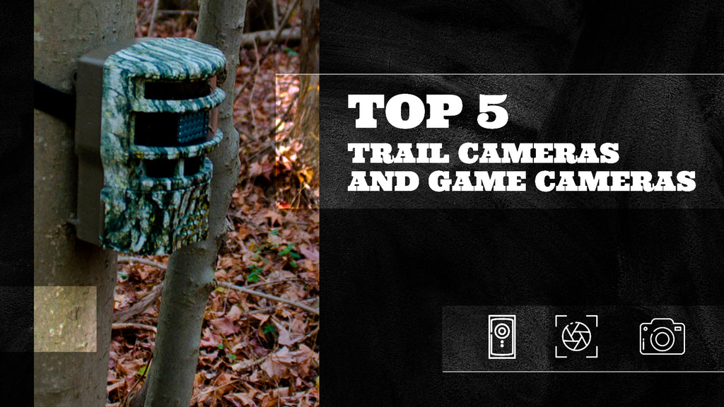 Top 5 Trail Cameras and Game Cameras