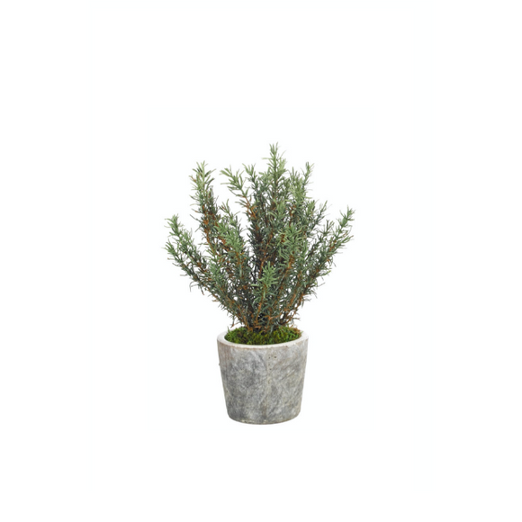 Faux Rosemary in Pot