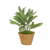 Faux Potted Herb