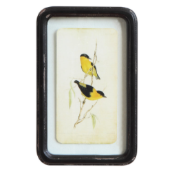 Framed Floating Bird Art
