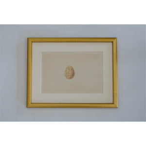 Brass Framed Egg Print