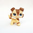 Rare littelest pet shop lps toys collie
