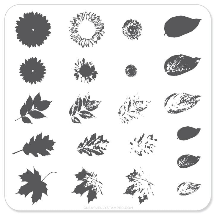 Clear Jelly Stamper- CjS-026- Sunflower & Leaves