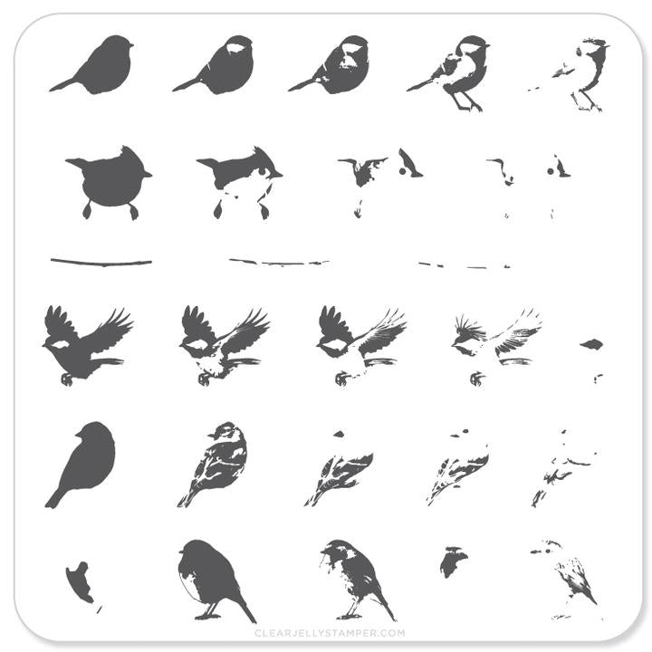 Clear Jelly Stamper- CjS-030- Itty Bitty Birds