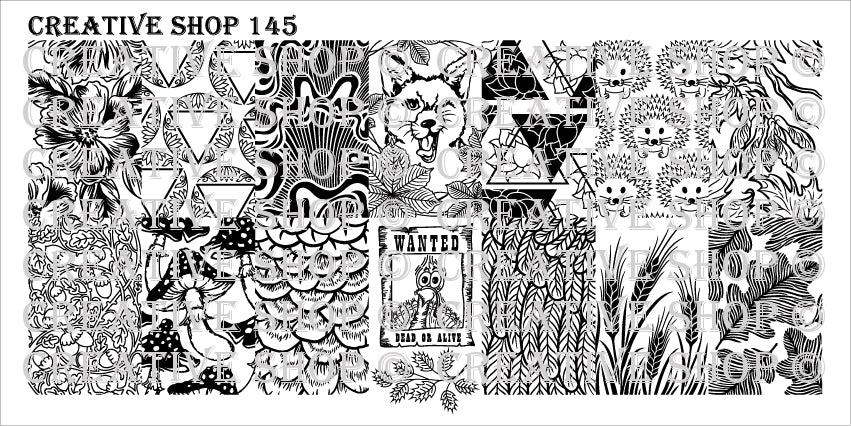 Creative Shop- Stamping Plate- 145