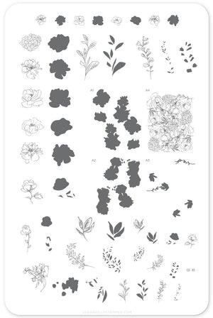 Clear Jelly Stamper- CjS-082- Sketched Garden