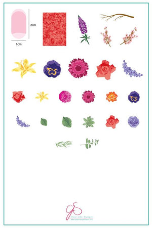 Clear Jelly Stamper- LC-13- Rose's Floral Garden