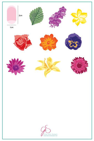 Clear Jelly Stamper- LC-16- Full On Floral